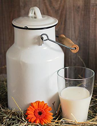 produit laitiers